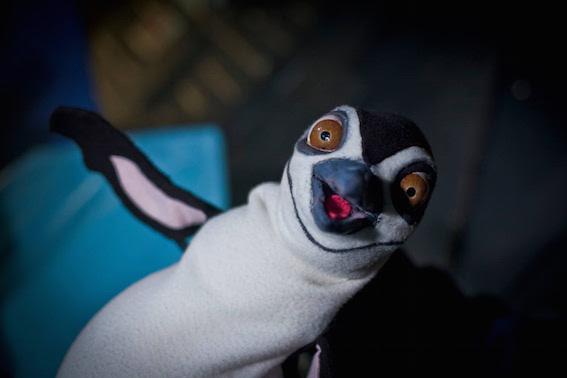 Emergency-Penguin
